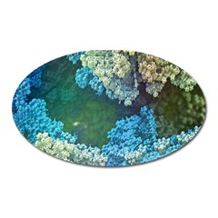 Fractal Formula Abstract Backdrop Oval Magnet