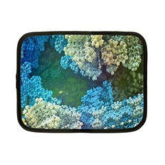Fractal Formula Abstract Backdrop Netbook Case (small)