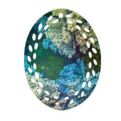 Fractal Formula Abstract Backdrop Oval Filigree Ornament (Two Sides)