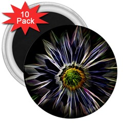 Flower Structure Photo Montage 3  Magnets (10 pack)