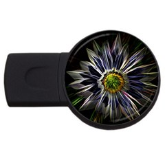Flower Structure Photo Montage USB Flash Drive Round (2 GB)