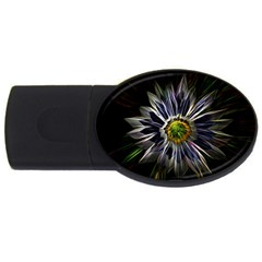 Flower Structure Photo Montage Usb Flash Drive Oval (2 Gb)