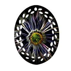 Flower Structure Photo Montage Oval Filigree Ornament (two Sides)