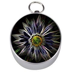 Flower Structure Photo Montage Silver Compasses