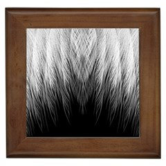 Feather Graphic Design Background Framed Tiles