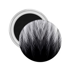 Feather Graphic Design Background 2 25  Magnets