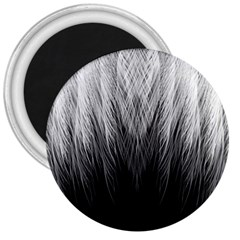 Feather Graphic Design Background 3  Magnets
