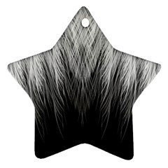 Feather Graphic Design Background Ornament (Star)
