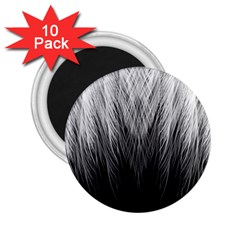 Feather Graphic Design Background 2 25  Magnets (10 Pack)