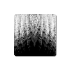 Feather Graphic Design Background Square Magnet