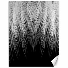 Feather Graphic Design Background Canvas 18  x 24