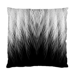 Feather Graphic Design Background Standard Cushion Case (Two Sides)