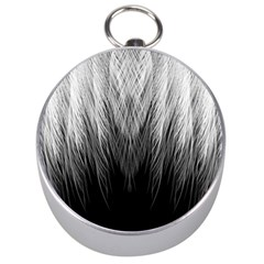 Feather Graphic Design Background Silver Compasses