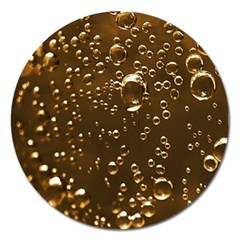 Festive Bubbles Sparkling Wine Champagne Golden Water Drops Magnet 5  (Round)
