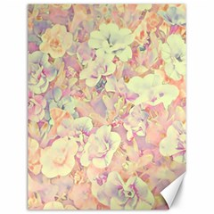 Lovely Floral 36b Canvas 12  x 16