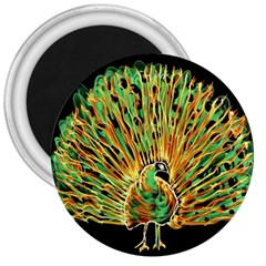 Unusual Peacock Drawn With Flame Lines 3  Magnets