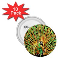 Unusual Peacock Drawn With Flame Lines 1 75  Buttons (10 Pack)