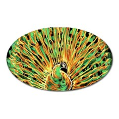 Unusual Peacock Drawn With Flame Lines Oval Magnet