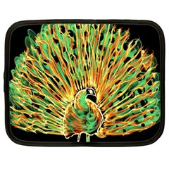 Unusual Peacock Drawn With Flame Lines Netbook Case (xl)