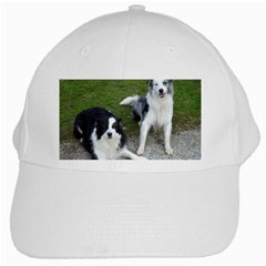 2 Border Collies White Cap