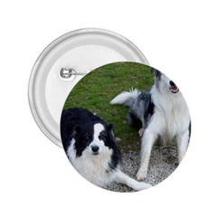 2 Border Collies 2.25  Buttons