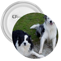 2 Border Collies 3  Buttons