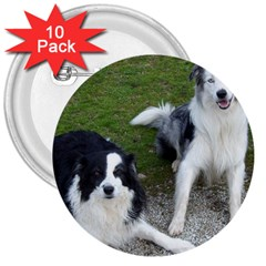 2 Border Collies 3  Buttons (10 pack)