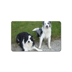 2 Border Collies Magnet (Name Card)