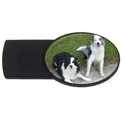 2 Border Collies Usb Flash Drive Oval (4 Gb)