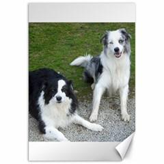2 Border Collies Canvas 20  x 30