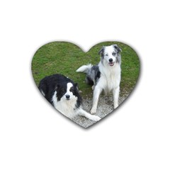 2 Border Collies Heart Coaster (4 pack)