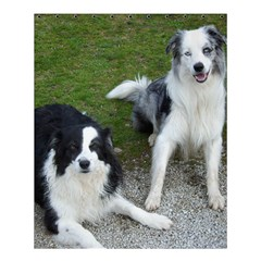 2 Border Collies Shower Curtain 60  x 72  (Medium)