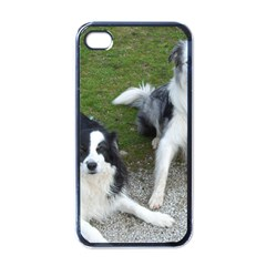 2 Border Collies Apple iPhone 4 Case (Black)