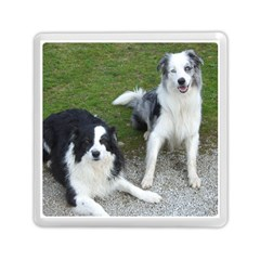 2 Border Collies Memory Card Reader (Square)