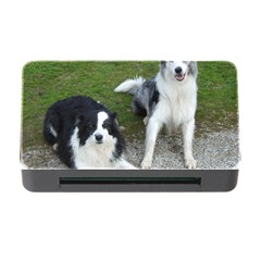 2 Border Collies Memory Card Reader with CF