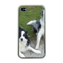 2 Border Collies Apple iPhone 4 Case (Clear)