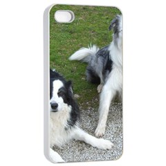 2 Border Collies Apple iPhone 4/4s Seamless Case (White)
