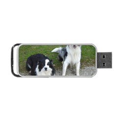 2 Border Collies Portable USB Flash (One Side)