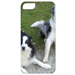 2 Border Collies Apple iPhone 5 Classic Hardshell Case
