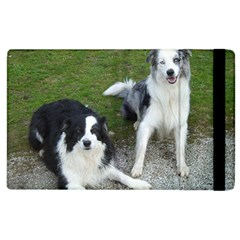 2 Border Collies Apple iPad 2 Flip Case