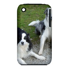 2 Border Collies iPhone 3S/3GS