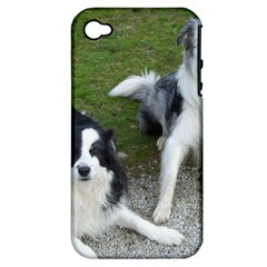 2 Border Collies Apple iPhone 4/4S Hardshell Case (PC+Silicone)