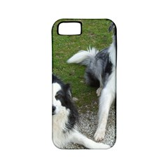 2 Border Collies Apple iPhone 5 Classic Hardshell Case (PC+Silicone)