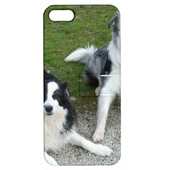 2 Border Collies Apple iPhone 5 Hardshell Case with Stand