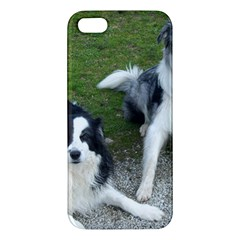 2 Border Collies iPhone 5S/ SE Premium Hardshell Case