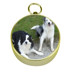 2 Border Collies Gold Compasses