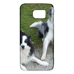 2 Border Collies Galaxy S6