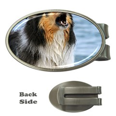 Black Tri Border Collie Wet Money Clips (Oval)