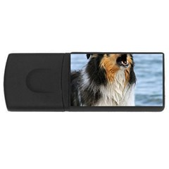 Black Tri Border Collie Wet USB Flash Drive Rectangular (1 GB)