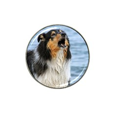 Black Tri Border Collie Wet Hat Clip Ball Marker (4 pack)